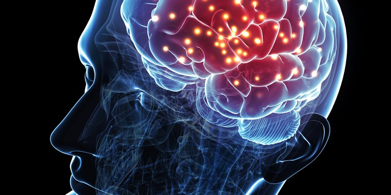 7 Myths About the Brain that Might Surprise You