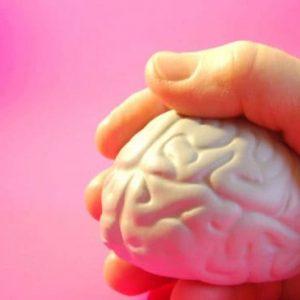 brain-in-hand-500x365-1